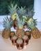 Ananas-Honigparade